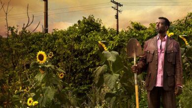 Photo of Belajar Bergerilya dalam Berkebun